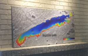 Falcon Lake print map